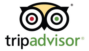 tripadvisor_logo_520x300x24_fill_hac3dd1e5