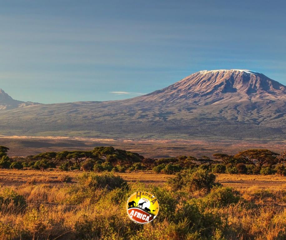 Safari_Tanzania_ (14)