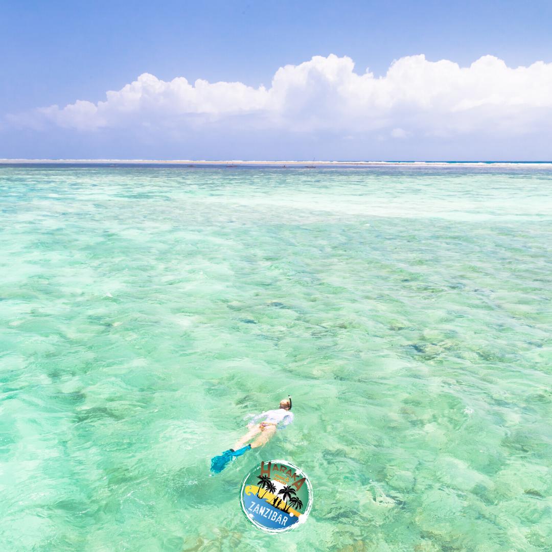 Vacanze_Zanzibar (12)