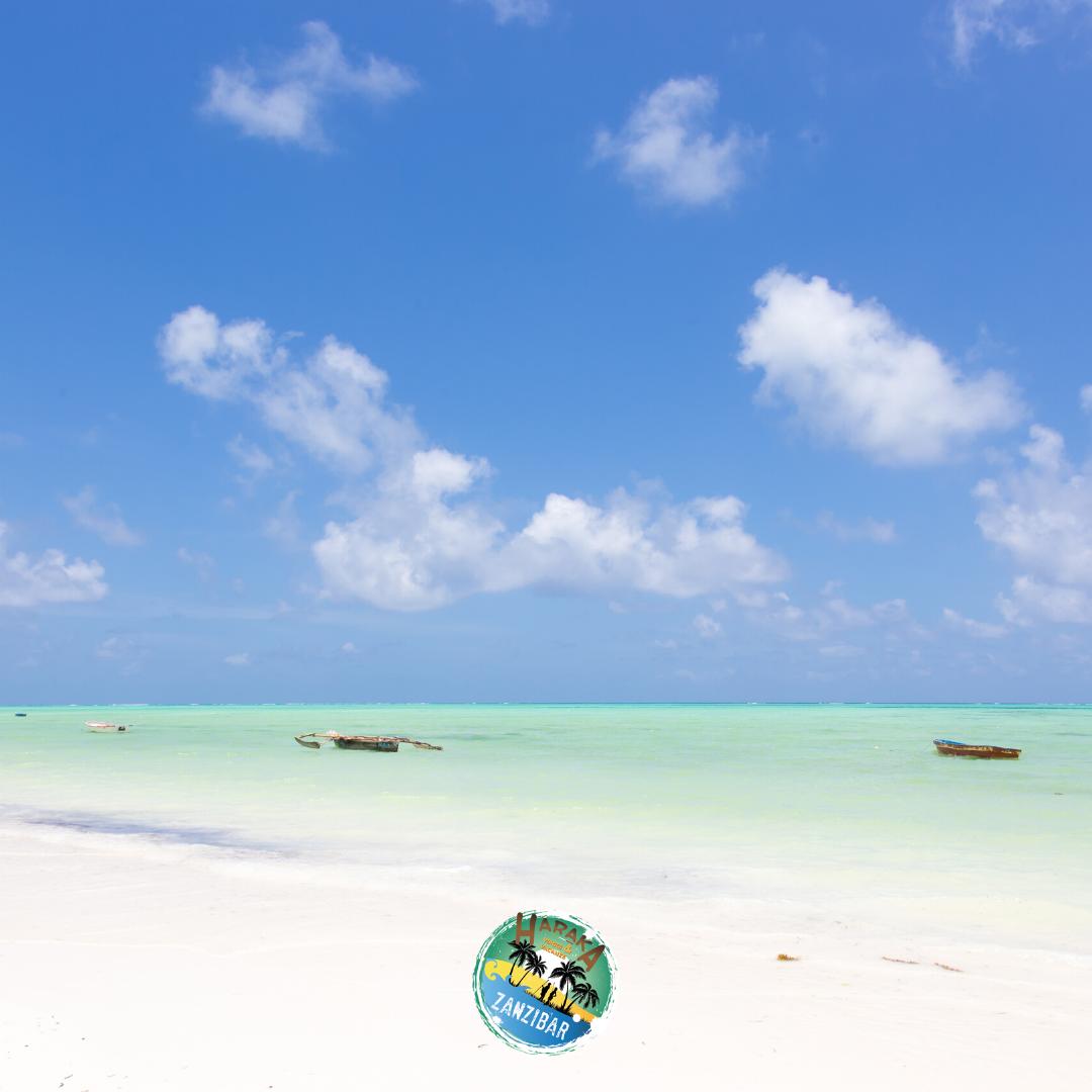 Vacanze_Zanzibar (13)