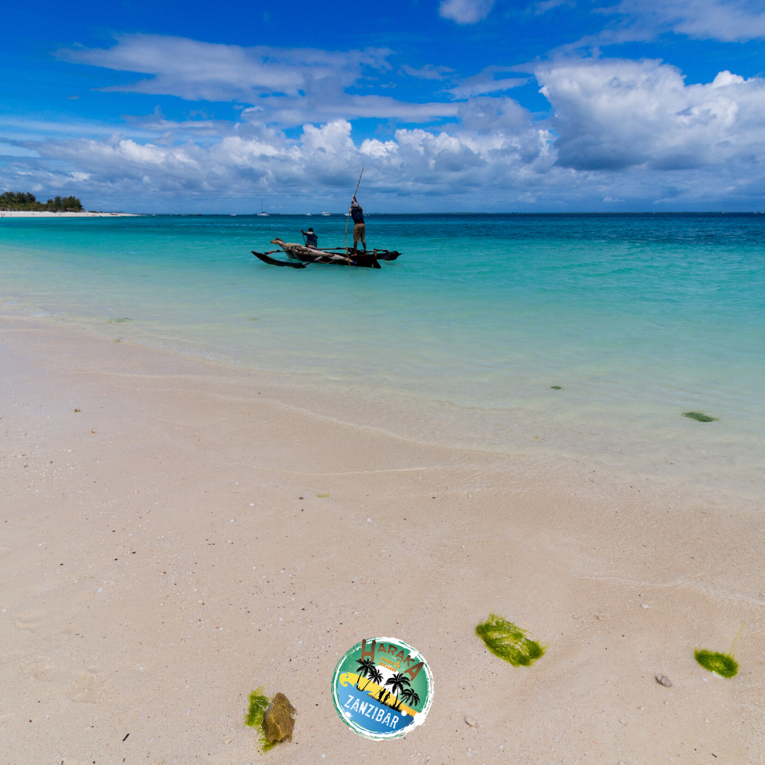Vacanze_Zanzibar (14)