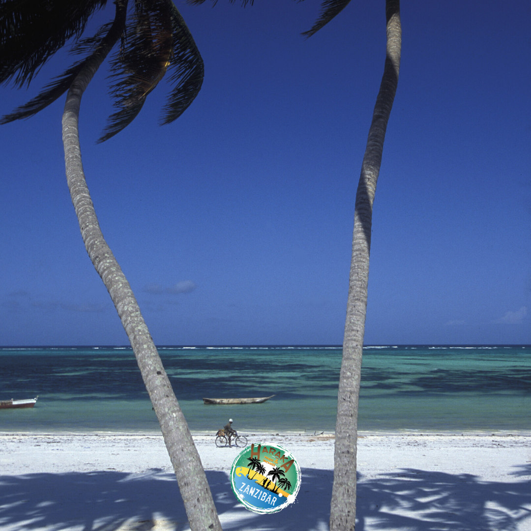 Vacanze_Zanzibar (17)