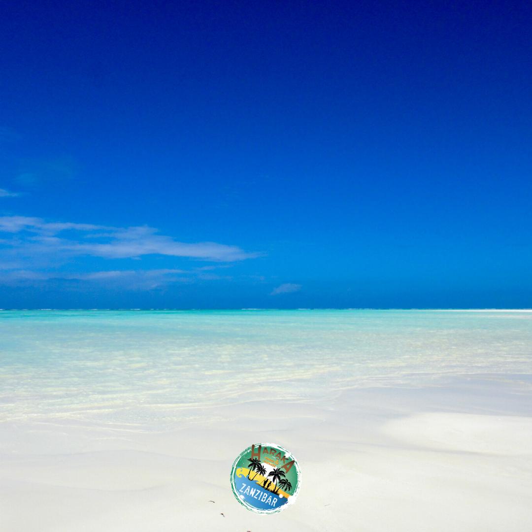 Vacanze_Zanzibar (22)