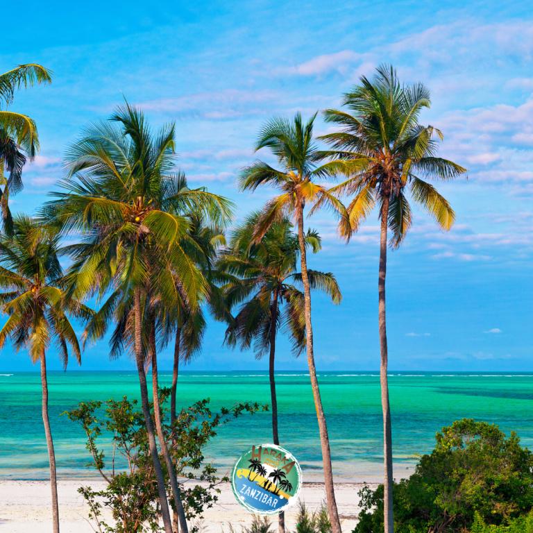 Viaggio_Zanzibar (1)