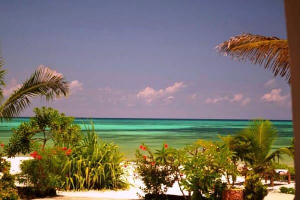 Next Paradise Boutique Resort Zanzibar