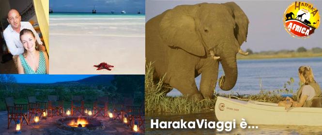 viaggi-africa-haraka-viaggi