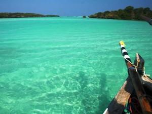 immersioni_mafia_island_