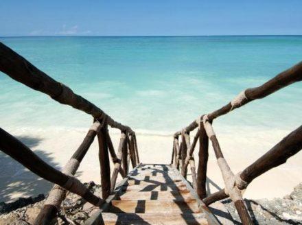 Zanzibar Maree