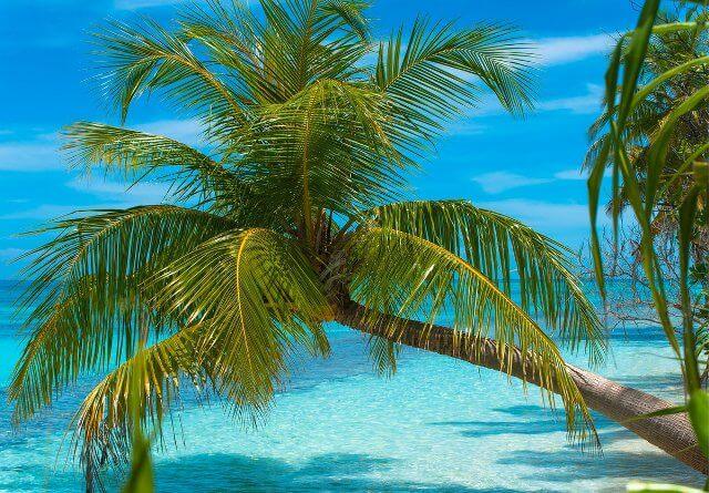 Vacanze alle Maldive - Dhiguveli Hotel - Atollo di Ari Sud
