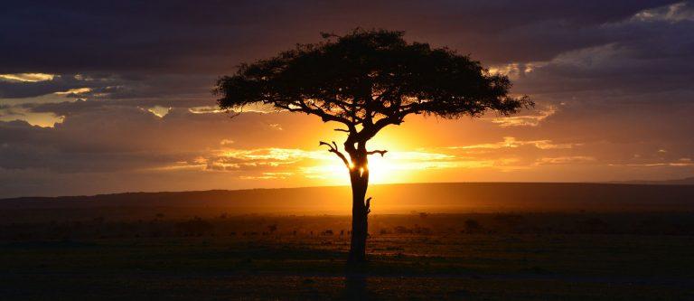 Kenya quando andare
